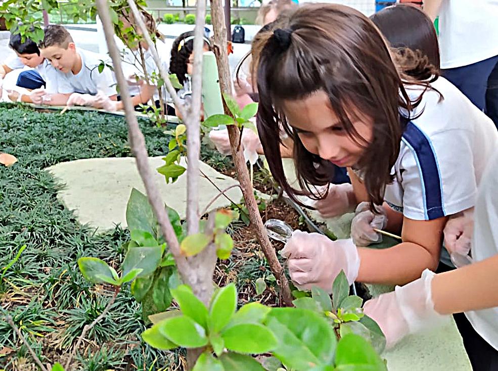 Estudo sobre o solo e suas características - 4º ano B